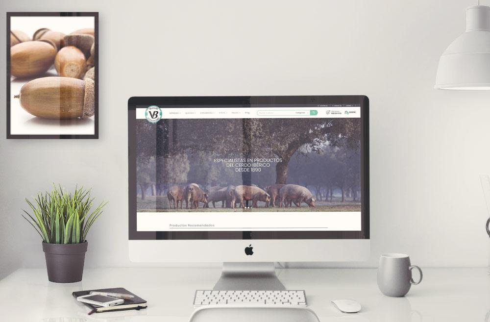 seleccion vb diseño tienda online